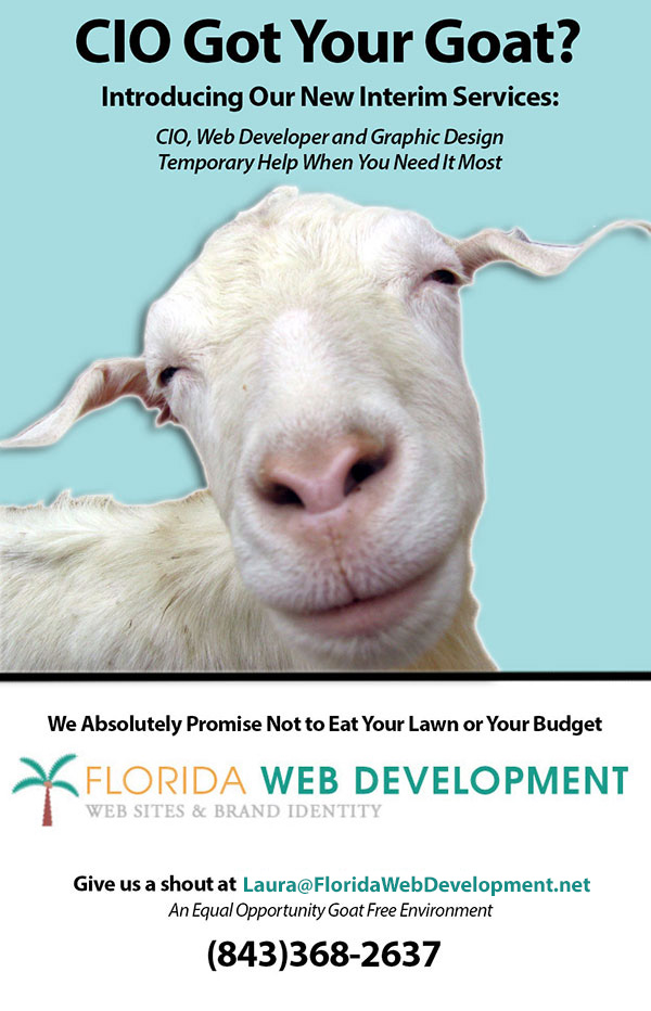 Interim Services From Florida Web Development